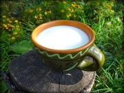 Молоко козье,  брынза в Житомире